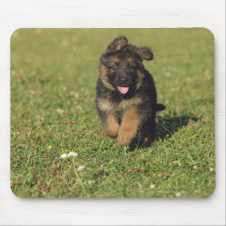 Puppy Running Mouse Pad