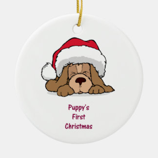 Puppy s FIrst Christmas Ornaments
