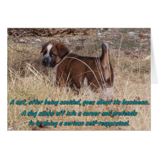 Puppy Self Reappraisal Greeting Cards