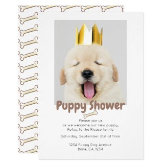Puppy Shower Invitation
