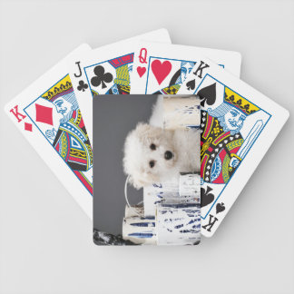 Puppy sitting amongst paint tins bicycle playing cards