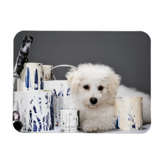 Puppy sitting amongst paint tins magnet
