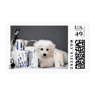 Puppy sitting amongst paint tins stamps