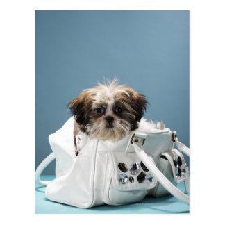 Puppy sitting in handbag postcard