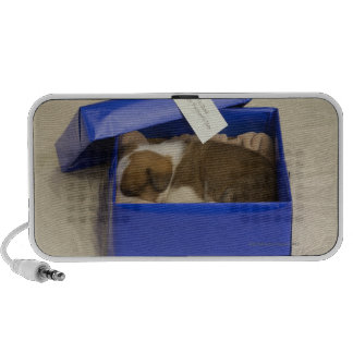 Puppy sleeping in a gift box travel speaker