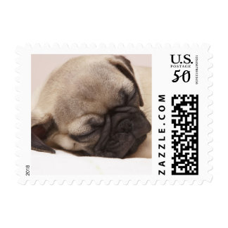 Puppy Soundly Sleeping Postage