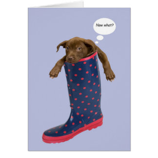 Puppy Stuck in Rain Boot by Focus for a Cause Card