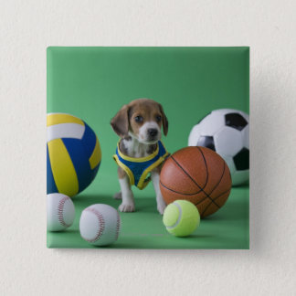 Puppy surrounded by sport balls button