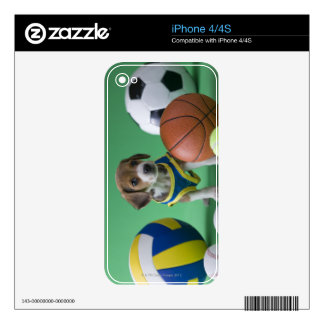 Puppy surrounded by sport balls iPhone 4S skins