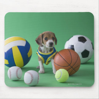 Puppy surrounded by sport balls mouse pad