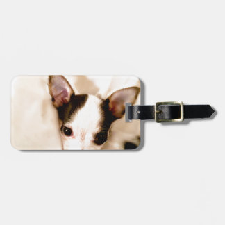 Puppy Tag For Luggage