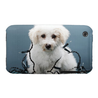 Puppy tangled in Christmas lights iPhone 3 Case