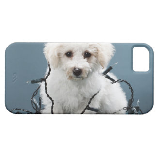 Puppy tangled in Christmas lights iPhone SE/5/5s Case