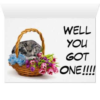 Puppy Voucher Card