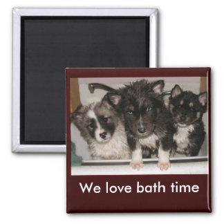 Puppy Wash Magnets