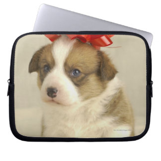Puppy wearing a red bow laptop sleeve