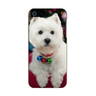 Puppy wearing Christmas bell on neck Metallic iPhone SE/5/5s Case