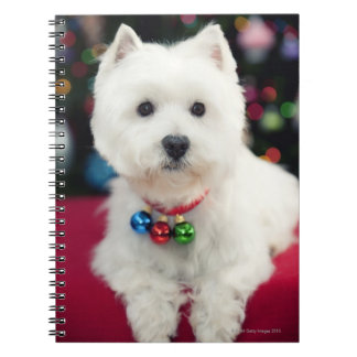 Puppy wearing Christmas bell on neck Spiral Notebook