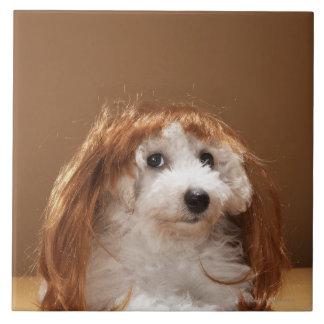 Puppy wearing ginger wig ceramic tile