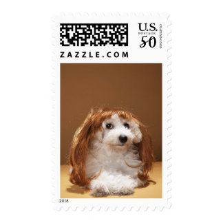 Puppy wearing ginger wig postage