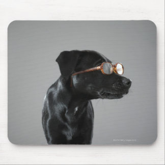 Puppy wearing glasses mouse pad