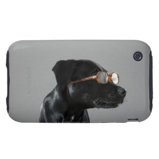 Puppy wearing glasses tough iPhone 3 case