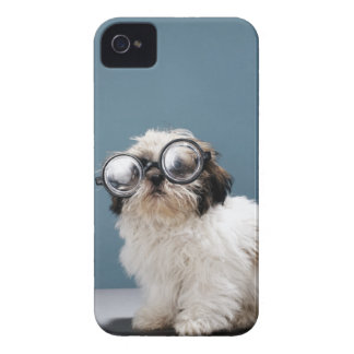 Puppy wearing thick glasses iPhone 4 Case-Mate case