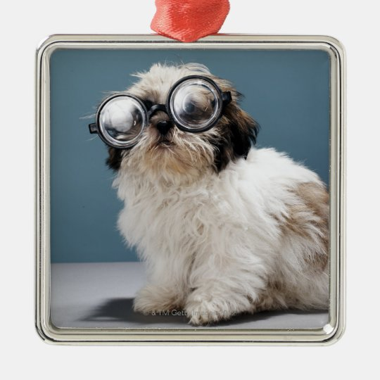 Puppy wearing thick glasses metal ornament