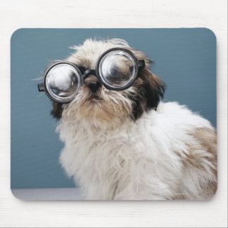 Puppy wearing thick glasses mouse pad