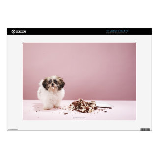 Puppy with cake on floor laptop decal