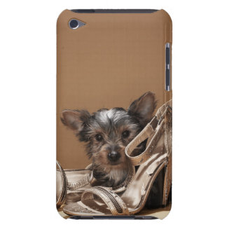 Puppy with damaged shoe iPod touch cover