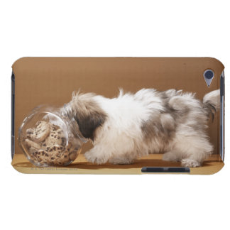 Puppy with head in cookie jar Case-Mate iPod touch case