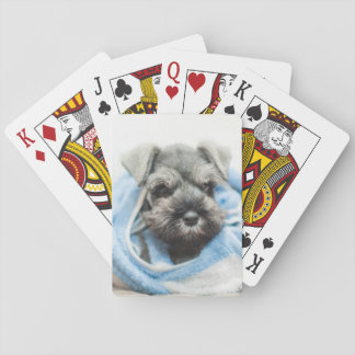 Puppy wraps with towel. card deck