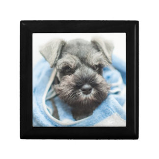 Puppy wraps with towel. keepsake boxes