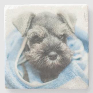 Puppy wraps with towel. stone coaster