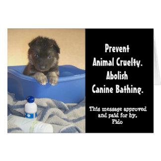 Puppy's Bath Time Campaign Card