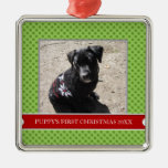 Puppy's First Christmas Photo Ornament