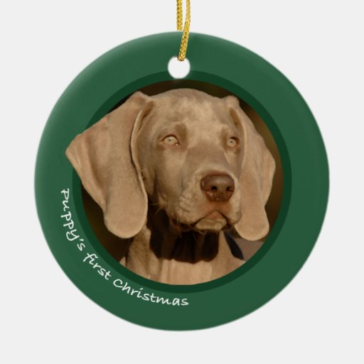 Puppy's First Christmas (Weimaraner) Christmas Tree Ornament
