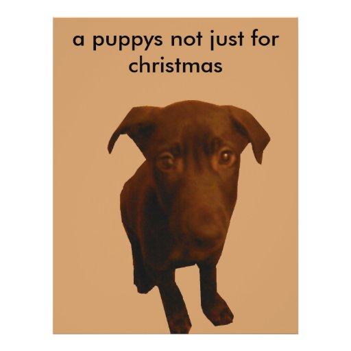 """, puppys no apenas para el navidad folleto 8.5"""" x 11"""""""