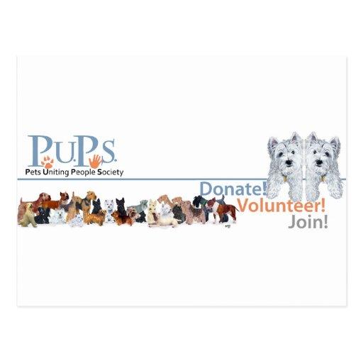 PUPs Logo Merchandise with Westie Pups Postcard
