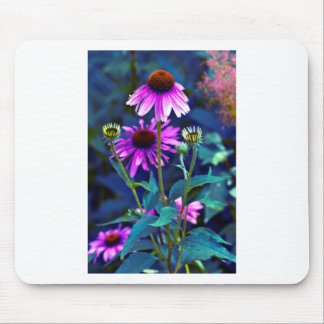 PUR-polarize Coneflowers Mouse Pad