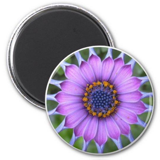 PUR-polarize more flower Magnet