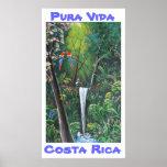 pura, vida, costa, rica, rainforest, tropical,