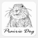 purairie dog face 3 sticker