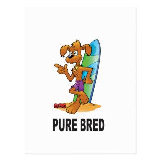 pure bred hip dog postcard
