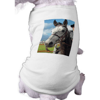 Pure breed horse tee