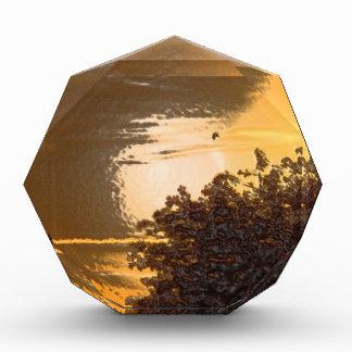 Pure Gold Award