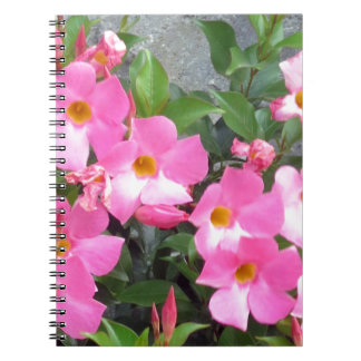 PURE pink smile FLOWERS Love Romance Sensual Gifts Notebook