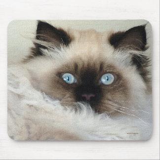 Purebred Birman Fluffy Cat Mousepad