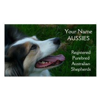 Purebred Black Tricolor Aussie  Business Card